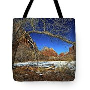 A View In Zion Tote Bag