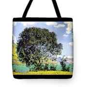 A View Of Lake Brienz From Bodeli Tote Bag