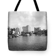 A View Of Miami Tote Bag