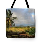A View Of Prince Kuhio Park Tote Bag