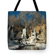 A View Of Rifle Falls Tote Bag