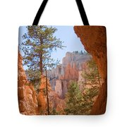A View Of The Hoodoos And Erosion Tote Bag