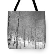 A View Through The Woods Tote Bag