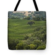A Vineyard In The Anderson Valley Tote Bag