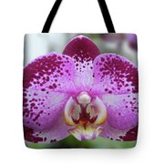 A Violet Orchid Tote Bag