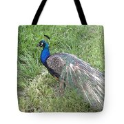 a Visit by Blue Tote Bag
