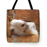 A Visit With A Smiling Goat Tote Bag