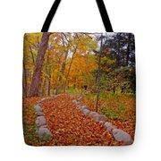A Walk Along Natures Path Tote Bag