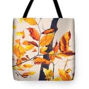 A Walk In Fall Tote Bag