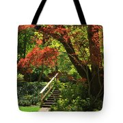 A Walk In Lithia Park Tote Bag