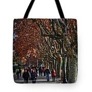 A Walk In The Park - Valencia Tote Bag