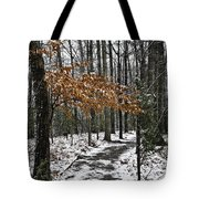 A Walk In The Snow Quantico National Cemetery Tote Bag