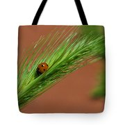 A Walk In The Tall Grass Tote Bag