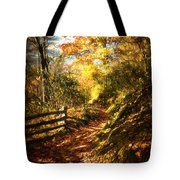 The Lighted Path Tote Bag