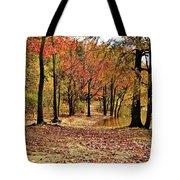 A Walk Through Autumn  Tote Bag