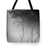 A Walk Through The Mist Tote Bag