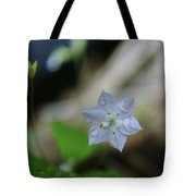 A Washed Flower Tote Bag
