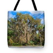 A Well Dressed Oak Tote Bag