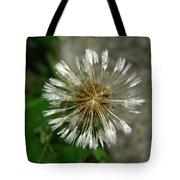 A Wet Dandelion  Tote Bag