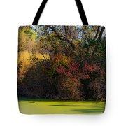 A Wetland Display Tote Bag