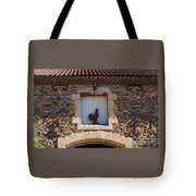 A Whimsical Wall In Lezignan, France Tote Bag