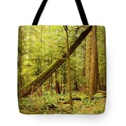 A Whisper In The Rainforest Tote Bag