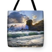 A Whisper In The Wind Tote Bag