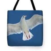 A White Gull Flying In Sky Tote Bag