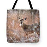 A White-tailed Deer In The Snow Tote Bag