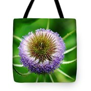 A Wild And Prickly Teasel Tote Bag