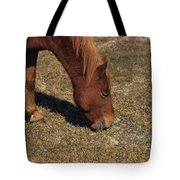 A Wild Pony In Assateague Tote Bag