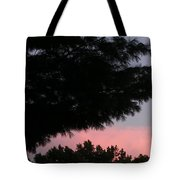 A Wing And A Glare Tote Bag