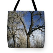A Winter Kiss Tote Bag