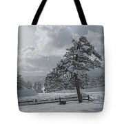 A Winter Storm In Pagosa Tote Bag by Jason Coward