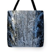A Winter View  Tote Bag