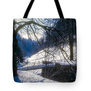 A Winter Walk In The Black Forest Tote Bag