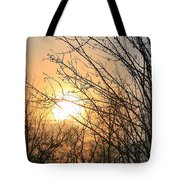 A Winter's Day After Glow Tote Bag