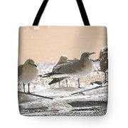 A Winter's Day Passing Bye Tote Bag