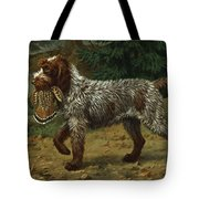 A Wire-haired Pointing Griffon Holds Tote Bag