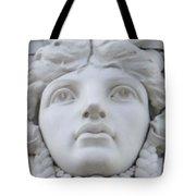 A Woman's View Tote Bag