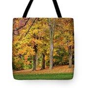 A Wonderful Walk In The Park Tote Bag