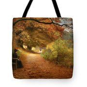 A Wooded Path In Autumn Tote Bag