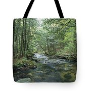 A Woodland View With A Rushing Brook Tote Bag
