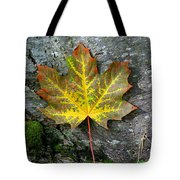 A Work Of Nature's Art Tote Bag