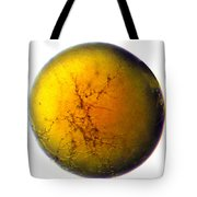 A World All Its Own Tote Bag