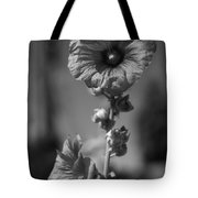 A World With No Color Differentiation Tote Bag