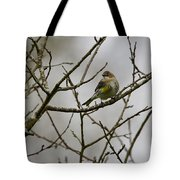 A Yellow-rumped Warbler In The Evening Tote Bag