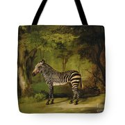 A Zebra Tote Bag by George Stubbs