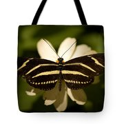 A Zebra-winged Butterfly At The Lincoln Tote Bag