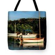 Abacos Quiet Tote Bag